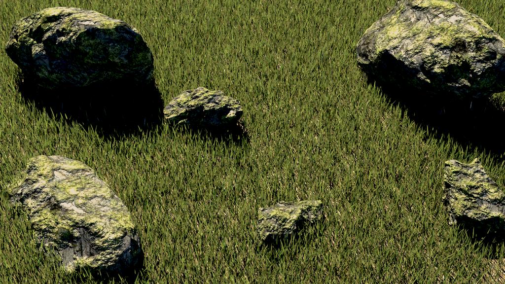 Grass Field - Hair